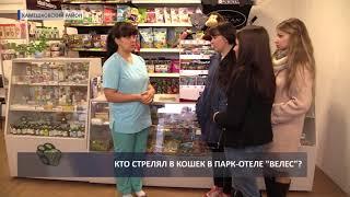 2017 09 08 HD Отлов кошек в Велесе