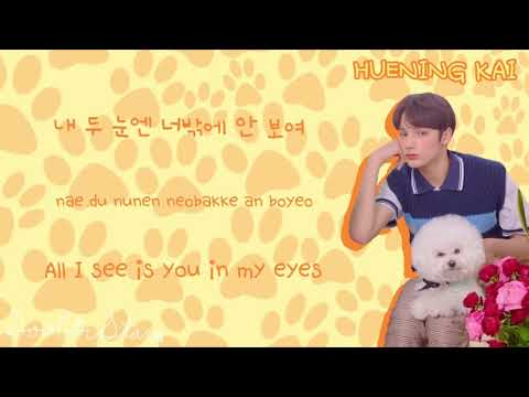 txt-(투모로우바이투게더)---cat-&-dog-(color-coded-lyrics-han/rom/eng)-**corrected**