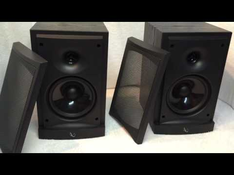Infinity RS-1 Speakers