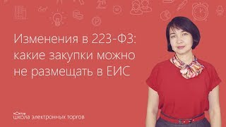 Изменения в 223-ФЗ: какие закупки можно не размещать в ЕИС