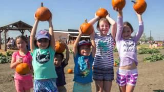 Dallas Pumpkin Patch - Preston Trail Farms