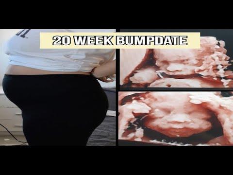 20 WEEK UPDATE   symptoms + BELLY BUMP(first pregnancy)