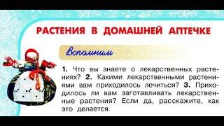 """Окружающий мир 2 класс ч.2, Перспектива, с.28-31, тема урока """"Растения в домашней аптечке"""""""