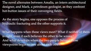 The Erenwine Agenda: a novel