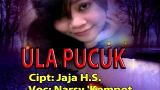 Video ULA PUCUK vocal NARSY KEMPOT download MP3, 3GP, MP4, WEBM, AVI, FLV Juli 2018
