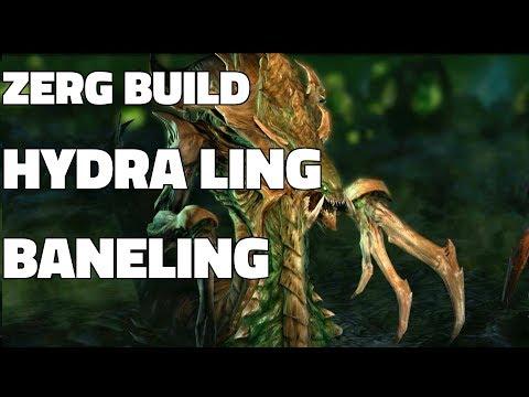 Starcraft 2: Zerg Build - Hydra Ling Baneling v Terran (Guide/Gameplay Demonstration!)