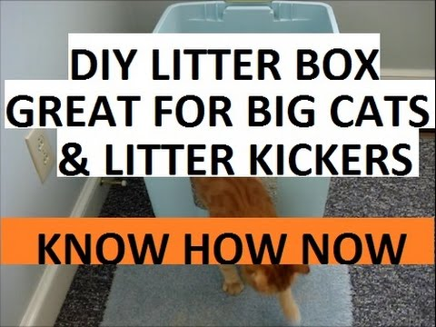 How To Make A Homemade Cat Litter Box Youtube