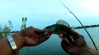 рыбалка в черте города озеро средний кабан ловля окуня