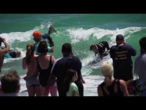 Surf Dogs, Jupiter Fl