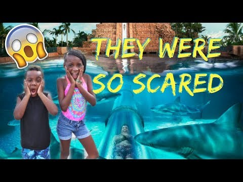 WE TOOK OUR KIDS TO THE  WORLD'S BIGGEST WATERPARK IN THE BAHAMAS!!! thumbnail
