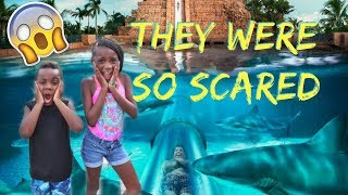 WE TOOK OUR KIDS TO THE  WORLD'S BIGGEST WATERPARK IN THE BAHAMAS!!!