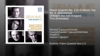 Piano Quartet No. 1 in G minor Op. 25: II. Intermezzo. Allegro ma non troppo - Trio: Animato