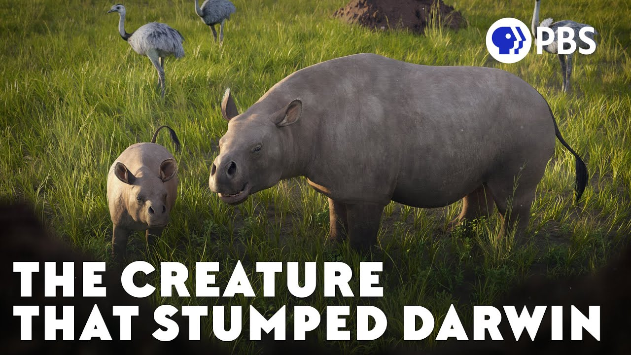 The Creature That Stumped Darwin