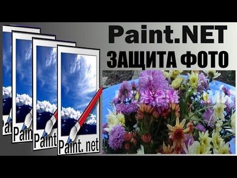 Paint. NET   паинт нет для чайников  .Как защитить фото от копирования