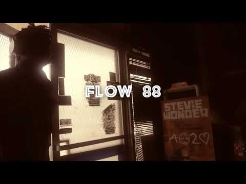 DomShiik - Flow 88