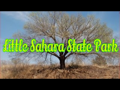 Visiting The Most Amazing Little Sahara State Park in Oklahoma, United States