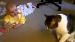 Кошка воспитывает ребенка / Приколы 2014 / Домашние животные / Забавные, смешные, милые кошки