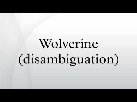 Wolverine (disambiguation)