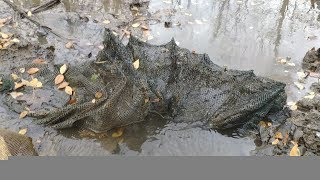 河南南阳农村小伙把村里的池塘水抽干,逮了多少鱼?一群人围着看