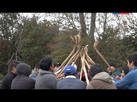 Seremi de Vivienda y Urbanismo visita la comunidad de Alto Biobío en celebración de We Tripantu