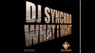 DJ Synchro - What I Want (Original Mix)