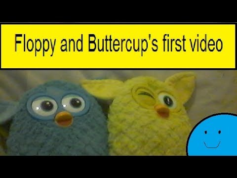 Floppy and Buttercup's first video