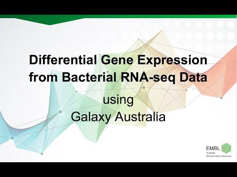 EMBL-ABR Training: 20181023 Differential Gene Expression from RNAseq using Galaxy Australia