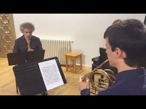 Ensemble Dialoghi - Reinecke Trio (4/4) For Piano, Clarinet And Horn, Op. 274