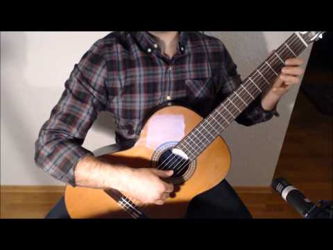 Title Theme - The Legend of Zelda: The Wind Waker on Guitar