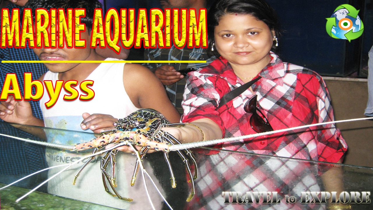 Fish aquarium verna goa - Marine Aquarium Abyss Indoor Live Aquarium At South Goa Travel Destination