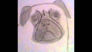 Sad Pug (Original) [HD]