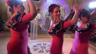 Шоу     балет     «Terradance» -  (руководитель   Елена Безбогина) -  Испанский танец