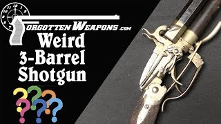 A Mystifying 3-Barrel Percussion Shotgun