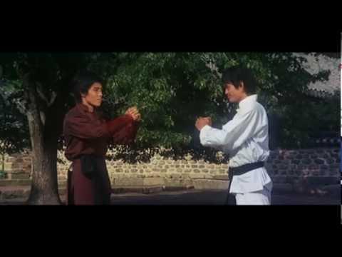 Die Zwillingsbrüder von Bruce Lee (Martial-Arts ganzer ...