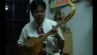 พิณลายลำเพลิน Phin thai folk music