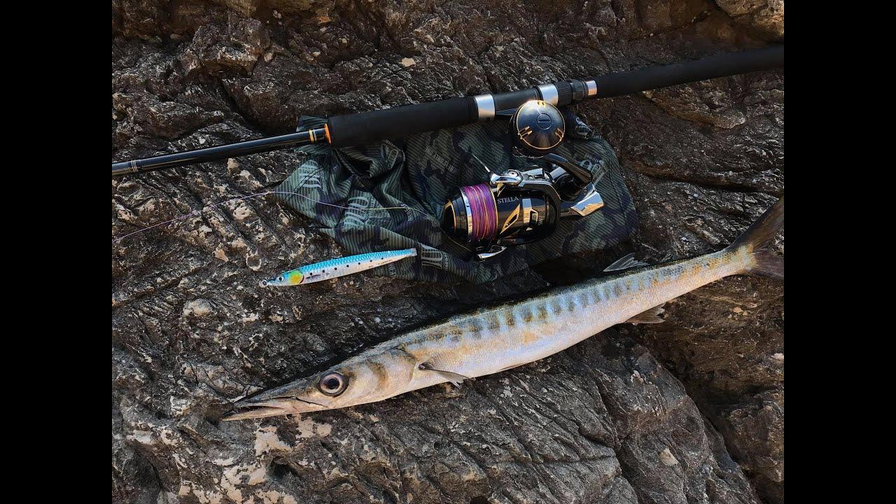 Shore jigging - Barracuda - new Shimano Stella SW 8000 HG