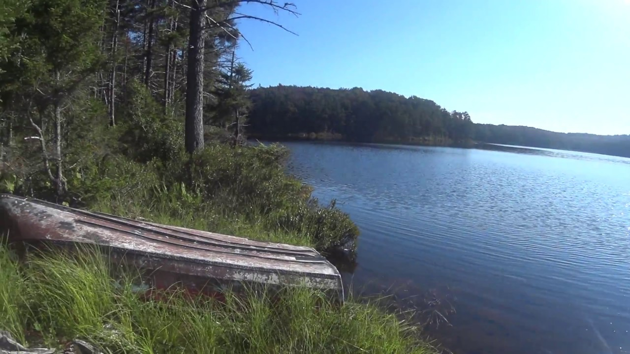 bushwhacking around horn lake in west canada wilderness youtube