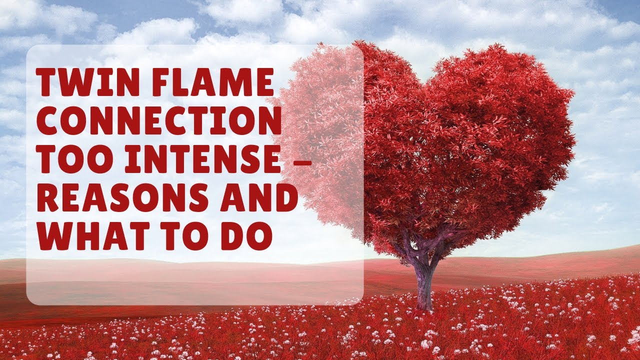 Twin flame connection too intense - Reasons And What To Do