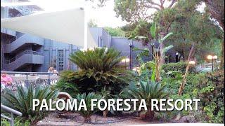 Отдых в Турции в ноябре стоит ли ехать поздней осенью Узнайте из обзора PALOMA FORESTA RESORT 5