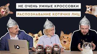 Киберкроссовки и шнурки, мордочки китайских котиков, Angry birds - шпионы и другое | Выпуск #7