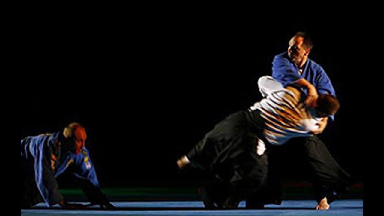 Bratislav Stajic- 35! years in aikido!