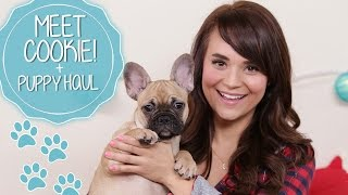 MEET COOKIE! + PUPPY HAUL Thumbnail