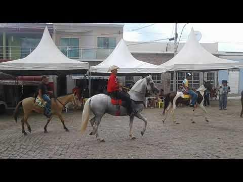 Cavalgada em Caturama BA 🐎🐎🐎🐎