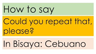 How to say Could you repeat that Please? in Bisaya