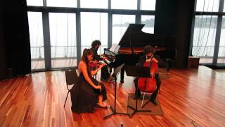 Beethoven Piano Trio op.1 nº3 - Allegro con brio