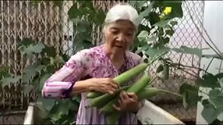 Điều ước giản đơn của cô Đặng Thiên Thanh Thách thức danh hài sau chuyện buồn gia đình