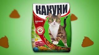 В чем СЕКРЕТ кота БОРИСА? О_о