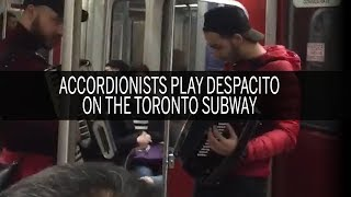 Luis Fonsi's Despacito ft. Daddy Yankee on the accordion