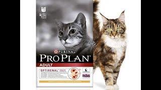 Лапахвост Pro plan корм для котов
