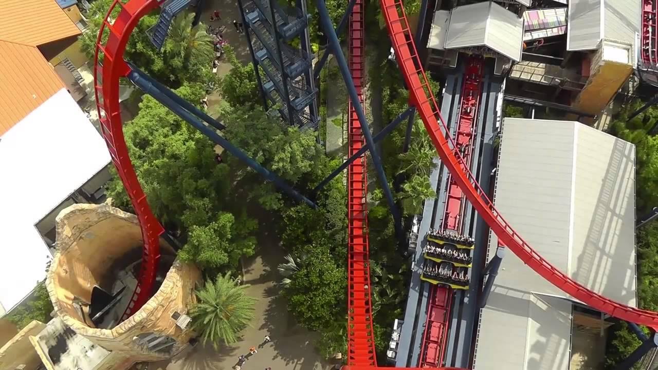 Sheikra Onride Pov 2013 Hd Busch Gardens Tampa Bay Florida Youtube